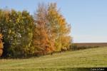 Kouzlo podzimu_36